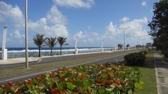 Le Moule boulevard - Guadeloupe