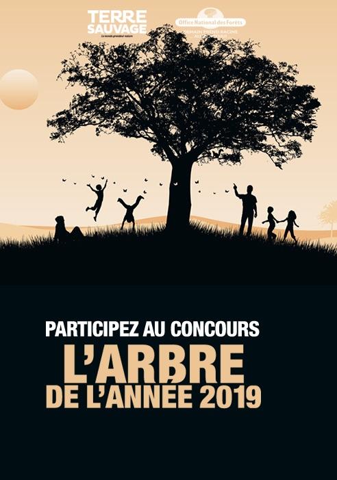 Concours ONF - l'arbre de l'année / Enter your favorite tree in competition!