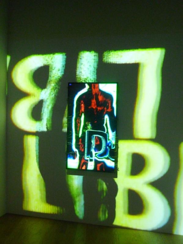 Vidéo de Maksaens Denis visible au Grand Palais jusqu'au 15 Février 2015