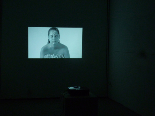 Video from Isabelle Levenez presented at L'Artocarpe, Aug. 2015