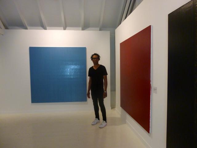 Les monochromes de Sébastien Mehal. Vue de l'exposition à la Fondation Clément en partenariat avec L'Artocarpe- 2015. (Oeuvres non disponibles à L'Artocarpe. Se référer aux autres photos ci-dessous)